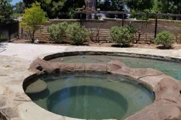 Pool Renovation - 27