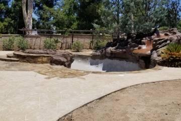 Pool Renovation - 18
