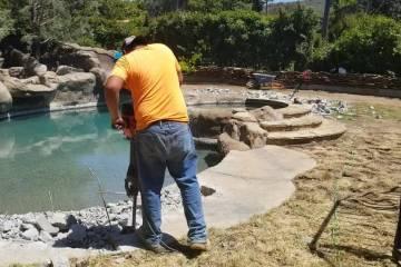 Pool Renovation - 10